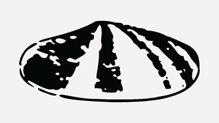 Shell logo 1900–1904