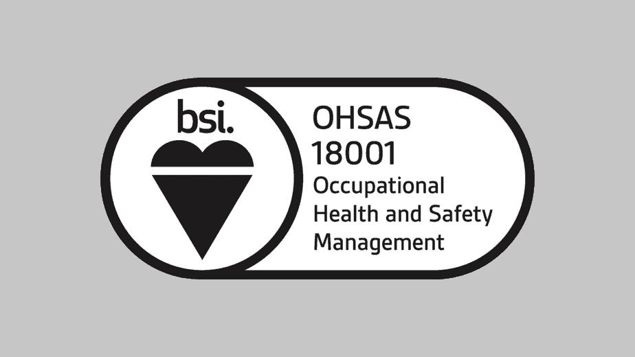bsi group logo certification