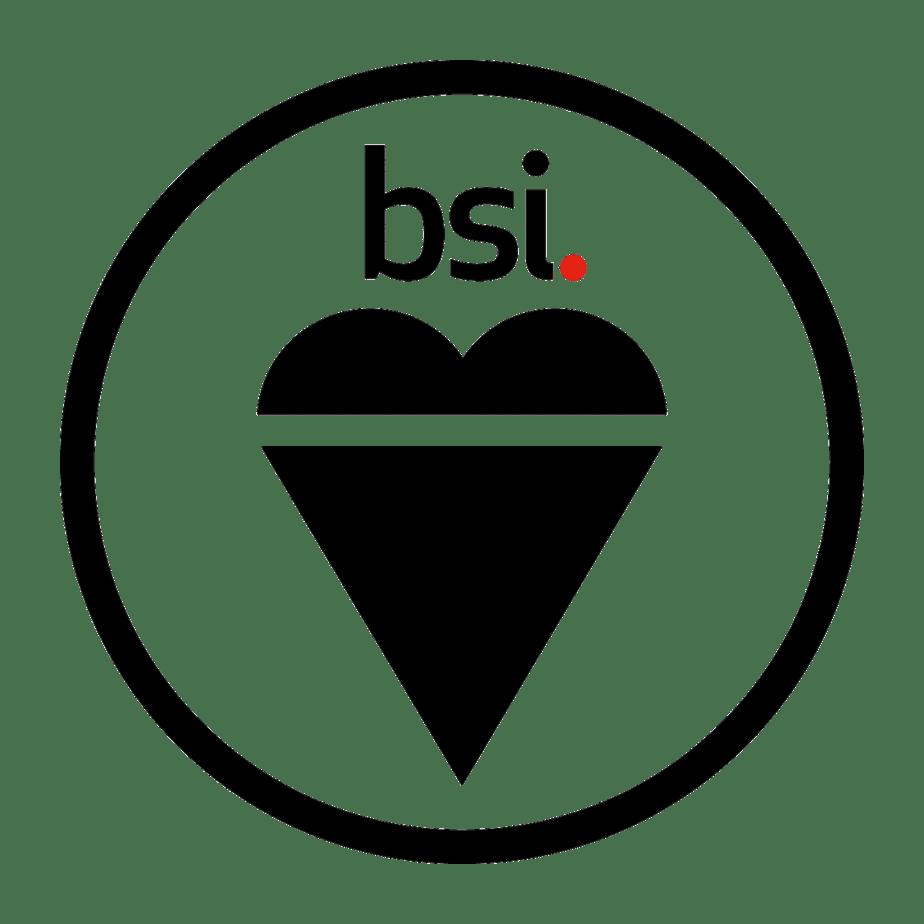 BSI logo circle.