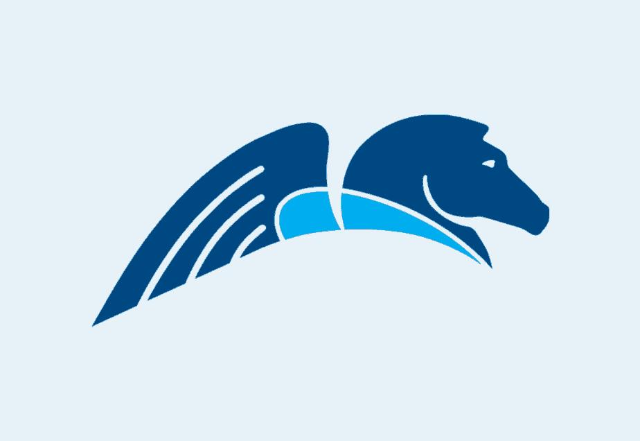 Software PEGA