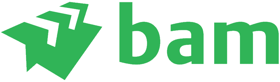 Royal BAM Group logo