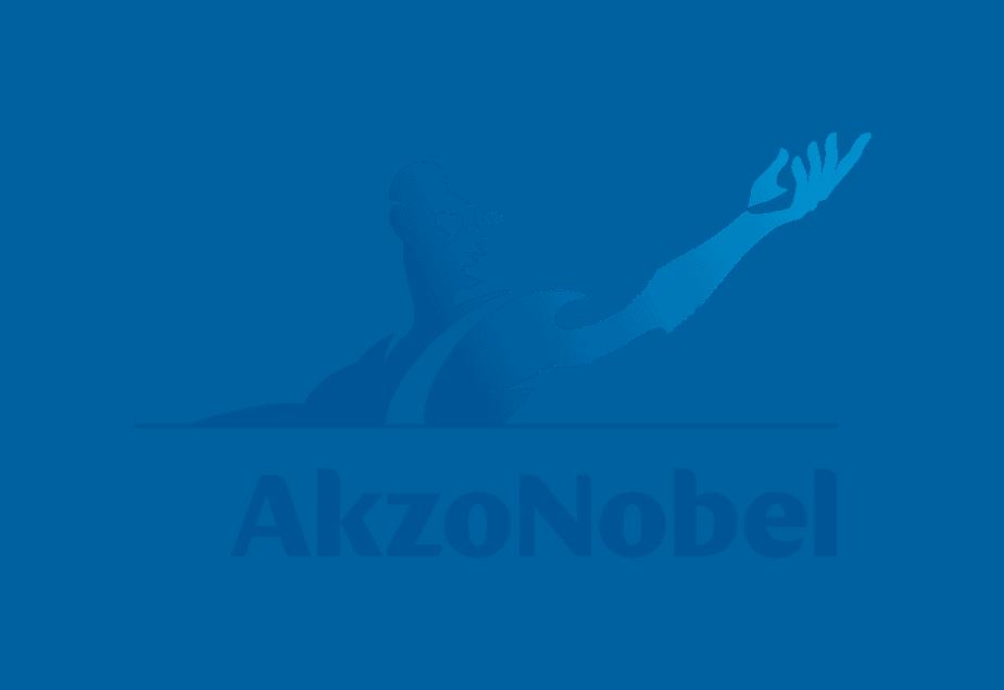 AkzoNobel_logo_01.png